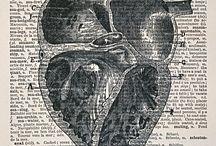 anatomical art / by Kim Oka