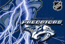 Nashville Predators / by Connie Foster
