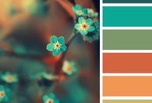 color pallets / by This Baby's Life