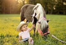 i 3 horses / by PHYLLIS TATE