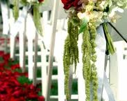 RED Wedding or Events  / by Edwina Washington Poindexter