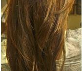 Hairstyles / by Bridgette Faye