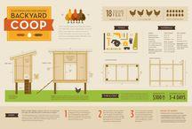 Urban Farming / Ideas for Creating and Managing an Urban Farm  / by Carol Swett