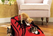 Gifts for Cat Lovers / Discover purr-fect gift ideas for your favorite feline friend.  We have cat beds, feeding supplies, play toys and more for cats of all personalities.  You'll also find great gifts for the Cat lover like Cat jewelry or t-shirts too. / by Collections Etc.