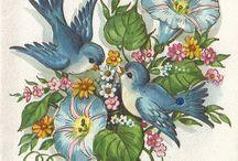 vintage greeting cards!! / by Carolyn Katsilas
