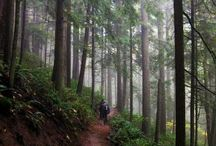 Portland, Oregon / by Amanda Wallace