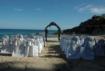Dream Wedding / by Sheridan Villegas