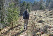 Take a hike! / by Kristen Toney