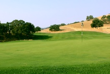 DGA Golf Designs / by Old Union