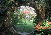 Garden Ideas ! / by Gwyn Whelband