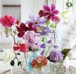 flowers / by Carolyn Chambliss