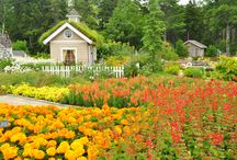 In the News / Coastal Maine Botanical Gardens in the news / by Coastal Maine Botanical Gardens