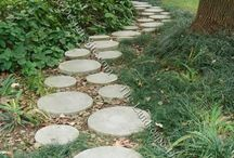 Gardening/Landscaping Ideas / by Michele La Comb