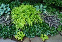 garden/landscaping / by RickG...