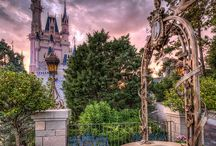Disney Photography / by Monica Guerra