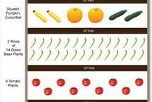 Vegetable Garden Plan... / by Melissa Gengler