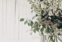 botanical / by Lee Foyle