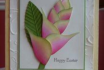 Card Ideas / by Sherry Ortega