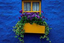Windows and Doors / by Debbie Medina