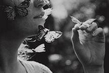 butterflies / by Wendy Sinclair