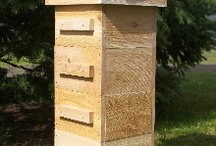 Beekeeping / by Debster