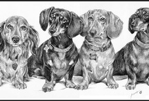 Love my dogs / by Tami Mahmood