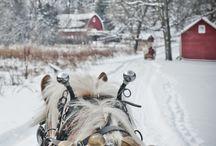 Landscapes - Winter / by Cheryl Stearley