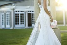Wedding / by Catherine Campbell