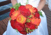 My Wedding / by Shannon German