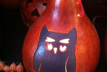 Our Fall Gourds / by Meadowbrooke Gourds