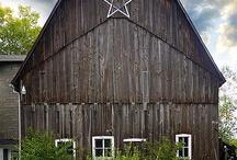 Amish / by Freddie Todd