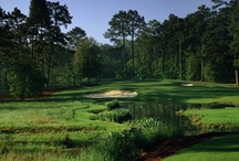 North Carolina Golf Courses / Great golf courses in North Carolina at great online tee time prices / by GolfByMe