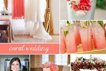Wedding - Midnight Blue, Coral, Green and Ivory - Stephanie and Dave / by Jen Antoniou Weddings and Events