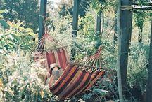 Outdoors / by Cynthia Leonard