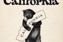 California Girls. / by Alicia Conlon