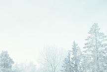Winter / by Pennsylvania Ski Areas Association