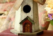 Here Birdie Birdie / by Amy Reed
