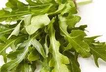 Salad Greens 101 / by Marzetti Kitchens
