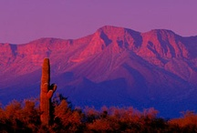 New Mexico the Land of Enchantment / by Geri Sandoval