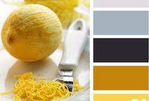 Colors / by Daria Pneva/ Дарья Пнева