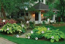 Landscaping ideas / by Donna McKean