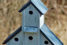 Birdhouses / by Holly Pope