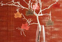 Holidays: Fall (Halloween/Thanksgiving) / by Tammy Magill