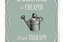 Gardening Quotes / by Great Garden Plants