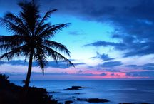 Tropical Beauty & Special Places / by Priscilla Kimberly SillyLips Weiss