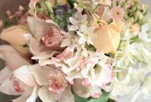 Flores / by Débora CoBat