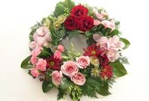 Wreaths / My favorite door decorations! / by Kathy Canevari