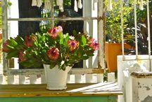 French Gardening / by maureen mason