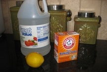 Quick easy and good for the environment / by Courtney Dimiceli