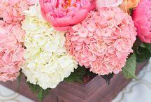 Flowers / by Taylor Munn